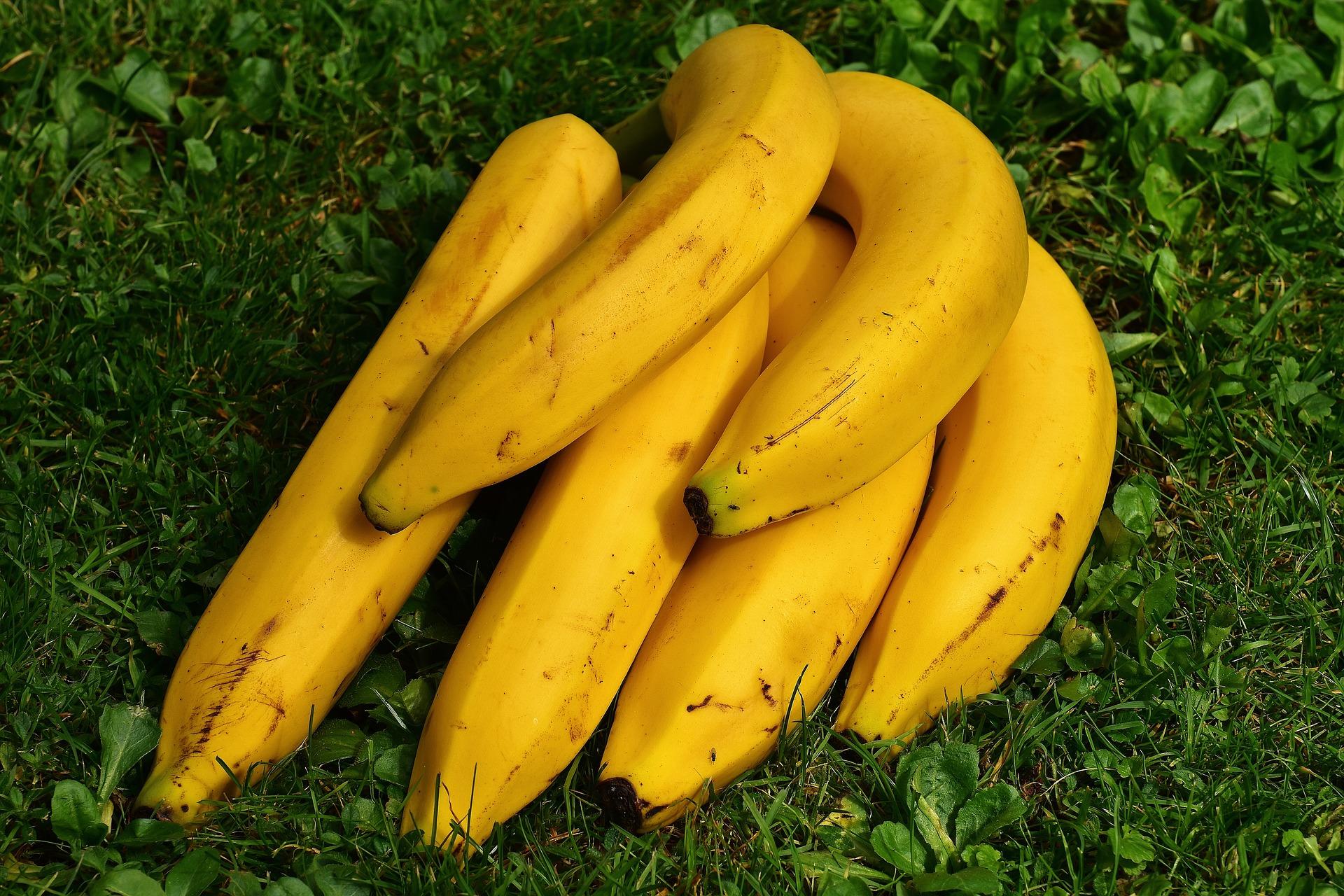 Frullato con banane